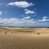 【あきまおのたび】晴れの日の鳥取砂丘