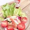 サラダに飽きた人へ。羽幌町のえびドレッシングが最強!レタスを毎日、飽きずに食べられます!