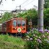 今日(6/15)・明日(6/16)の近江鉄道