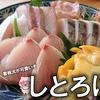 【津市】喫茶店で食べる市場直送の鮮魚『しとろにえ』に行ってきた!