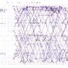 1975年3月改正 飯田線電車運用図
