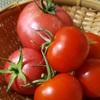 和食とトマト、最初に組み合わせた人、天才!見た目も栄養も盛れるものね。