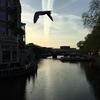 アムステルダム旅行記 [7]  運河のこと