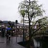 風来坊〜倉敷・大阪編〜