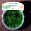 トロピカ社 1・2・Grow! ニューラージパールグラス 1CUP 熱帯魚・アクアリウム 水草 その他 アクアテイラーズ