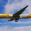 シンガポールの航空会社「スクート航空」に記事が取り上げられました!