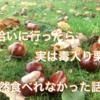 <ドイツ>近所の公園で栗を大量にゲット!