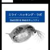 技術書典6【え04】で不正指令電磁的記録供用を扱った本を出します
