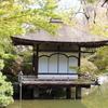 みどころをおさえて和歌山城観光をもっと楽しもう!