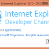 Internet Explorer Developer Channel を試してみるテスト