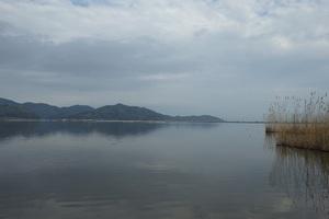 西の湖で救助船を呼ぶ