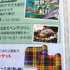 2017/11/18 アクア・トト ぎふのクリスマス&次回企画展予告