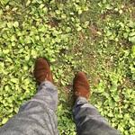 秋はスエード靴の季節