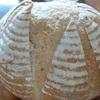 ホぉ・・ずいぶん大きなライ麦パンが、焼き上がったね 🍞