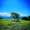 【7日目・ハワイ島北西部】自分の未来が楽しみになる。