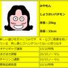 スーパーマリオ64 その参