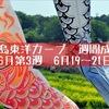 広島東洋カープ週間成績[6月第3週][6月19日〜21日]