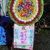 最強助っ人『あっかりん』再び降臨!! ~田島保育園、さとうきび収穫体験~