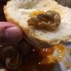 カタツムリを食べる。ご対面編その2