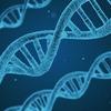 双極性障害は遺伝するのか? 身近な例を考えた