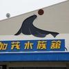 鶴岡市立加茂水族館に行ってきた