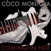 ココ・モントヤ(Coco Montoya)『Coming In Hot』入手