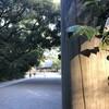 師走の「こころの小径」をゆく。 ~愛知県名古屋市「熱田神宮」 参拝記