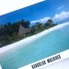 地球温暖化について考える✨『南の島の大統領 沈みゆくモルディブ』