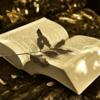 【今!読みたい本】2017年直木賞と本屋大賞W受賞の例のアノ本