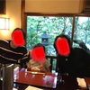 東京でホタル狩り‼️