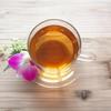 【女性必見】マテ茶のおすすめ人気ランキングベスト10