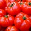 《スペイン》トマティーナ(トマト祭り)をより楽しむために 知っておきたい情報(チケット準備 宿 体験記)まとめ