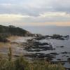 最近の調査 神奈川と岐阜