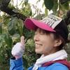 【渋柿の木の剪定のお話】来年は当たり年で実り良くなりますように。