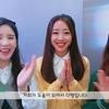 「映像」今月の少女探究#232 (LOOΠΔ TV #232)日本語字幕