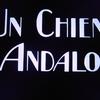 """シュルレアリスム? 実験映画? いやいやコメディでしょう、これは~""""アンダルシアの犬"""""""