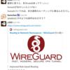 WireGuardでAllowedIPsに0.0.0.0/0を指定するとパケットが全てVPNインターフェイスに吸い込まれてしまう件