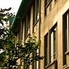 「黙食」問題の衝撃!!日本を衰退させた学校教育の闇。