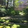 庭の生態図(の一部)