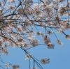 一眼レフを触ったこともない私が3時間で使い方、撮り方を分かるようにしてくれた写真家鶴岡勝さん