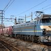 貨物列車撮影 12/17 EF66 27充当の5052レを撮影する