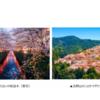 PAG ジャパン『pass act go japan』河合|国内旅行ニュース『世界を牽引する旅行検索エンジンKAYAK、国内・訪日APAC旅行者が選ぶ「桜シーズンに人気の旅行先ランキング」を発表!』
