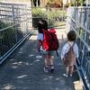 【3歳育児】ギャン泣きの幼稚園3週目、そして4週目の今
