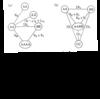 ゲノム分析の方法
