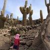 3歳と登る、ウユニ巨大サボテンだらけの「インカワシ島」(ウユニ・ボリビア