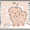 【犬漫画】犬友さんちに預けられた話その2
