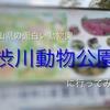 岡山県の面白い動物園!渋川動物公園に行ってみた!