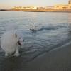 ○海で るるるん♪