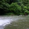 雨の後の渓流でちょっと