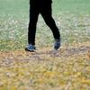 ランニングログ 心拍トレーニング14週目 7-3日目(休止中) 元・心房細動ランナーとお方さま、ポンコツ夫婦のフルマラソンチャレンジ日記